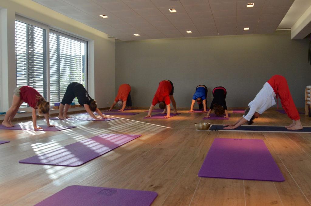 personnes pratiquant le yoga